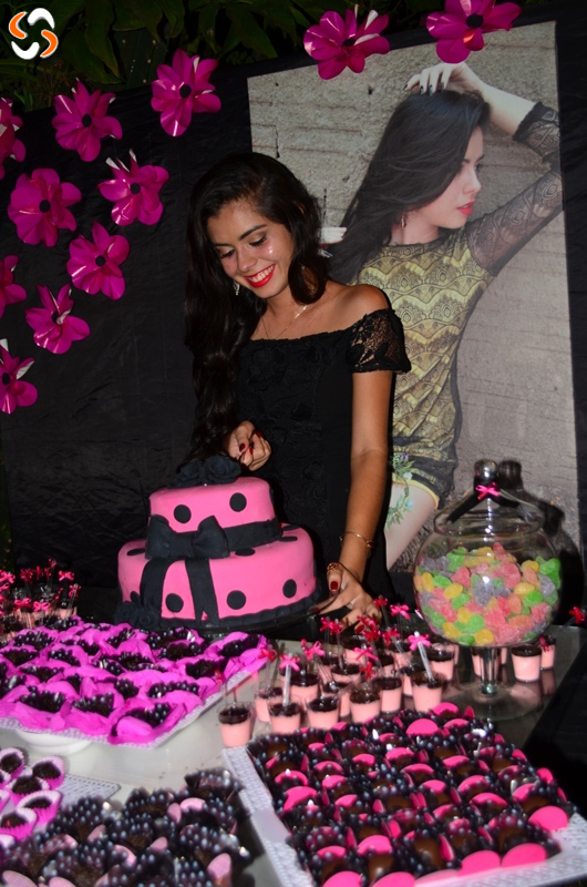 Niver - Emily Andrade